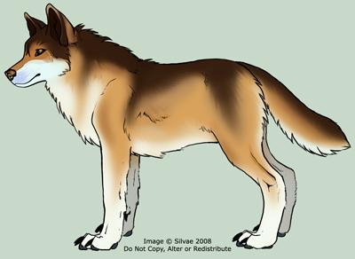 View a character sheet Davawolf