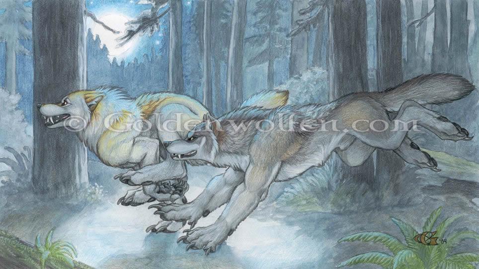 goldenwolfen02.jpg