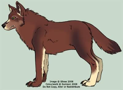 toriwolf